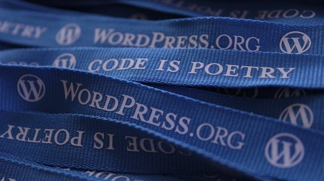Lanyards printed with Code is Poetry